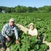 Dave and Michele in the yellow squash field.